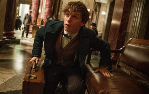 Spectra Film Review: FANTASTIC BEASTS AND WHERE TO FIND THEM