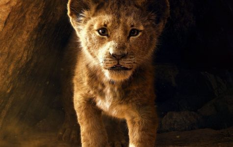 REVIEW: Lion King (2019)