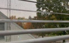 Siena Snapshot: A Student's Quarantine Story